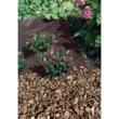 ANTIHERBAS GEOTEX műanyag talajtakaró 1,6 x 10m Fekete