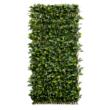 Willgreen fűzfa apácarács levelekkel
