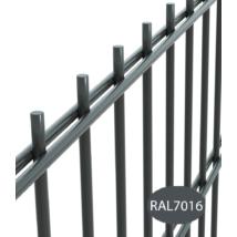 2D horganyzott antracit kerítéselem 6-5-6mm/50x200/103x250cm